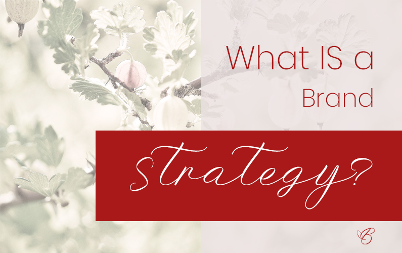 Your brand strategy drives how your brand presents itself