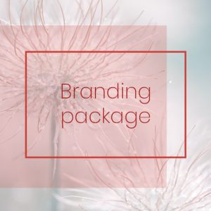 branding package for creative and holistic business