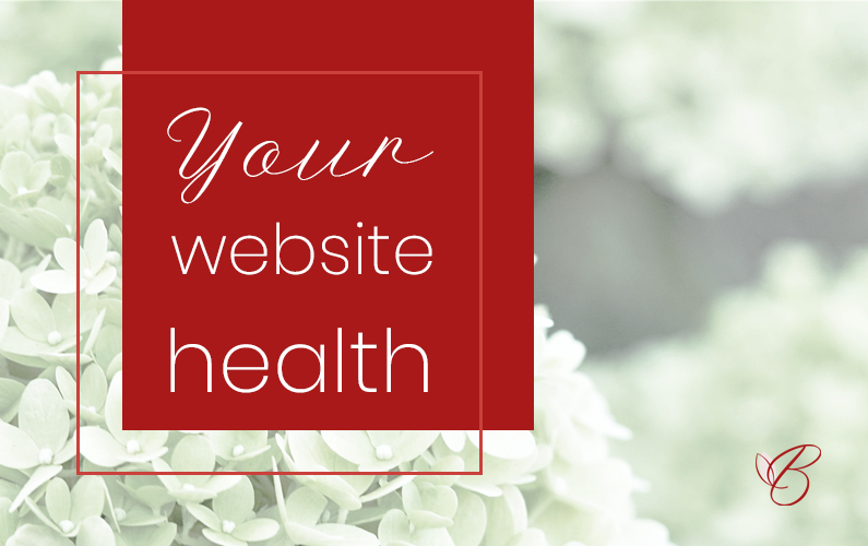 A healthy website is a well-maintained website