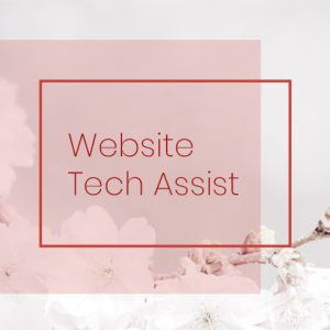 single session technical assistance for your website and email provider